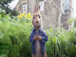 """""""Кролик Питер"""""""