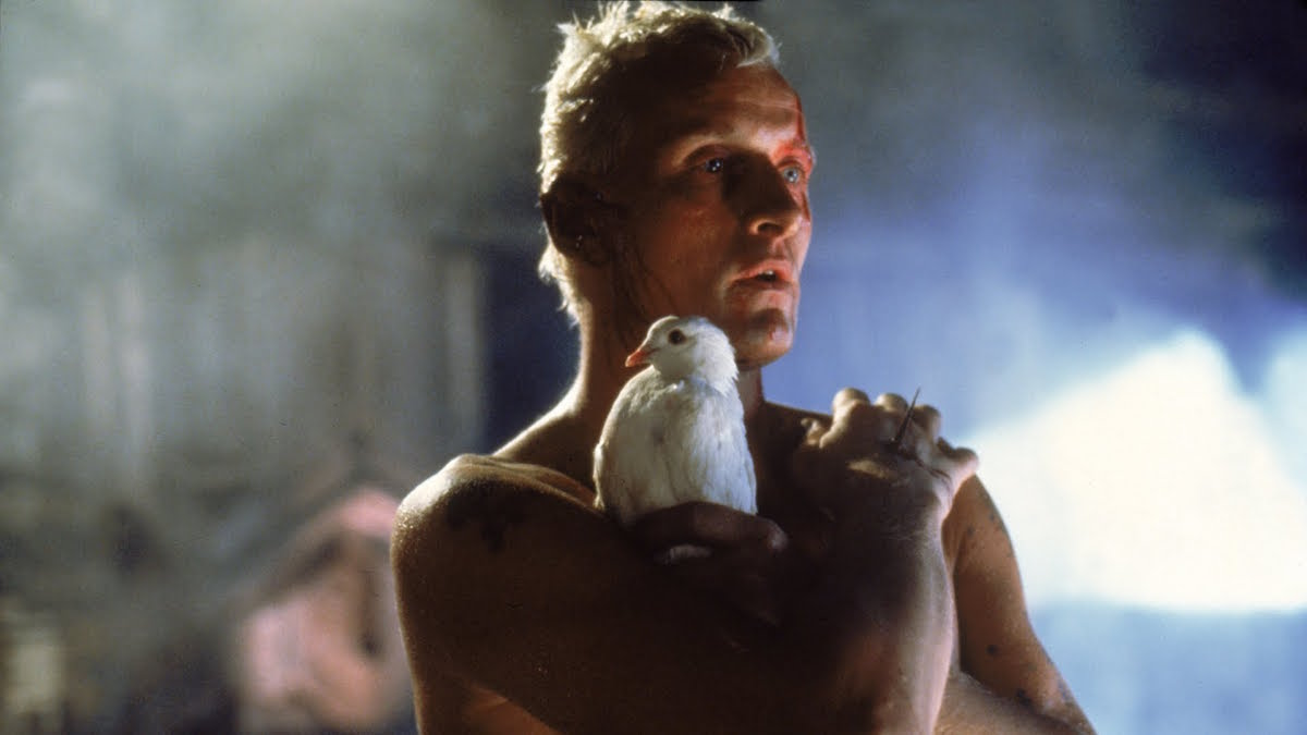 ridley scotts blade runner Ridley scott, who directed the 1982 sci-fi classic, told mtv news that the sequel's script is written and ready to go, and ford is absolutely on board for the film read more harrison ford sought to reprise classic role for 'blade runner' sequel i sent him this.
